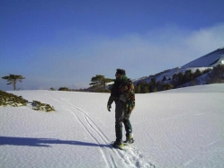 Mt Etna - world of adventures !!!: snowshoes.