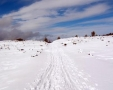 Mt Etna - world of adventures !!!: snowfield.